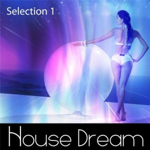 house_dream_-_selection_1__2011_